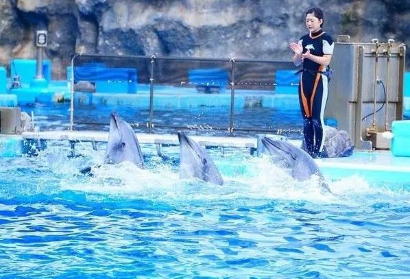 日本名古屋国际水族馆用品展览会